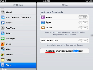 iPad-settings-Store-Screen