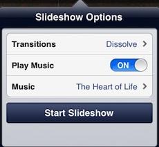 slideshow-options-dialog-box
